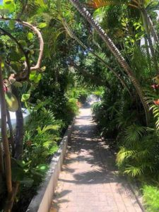 Sint Maarten Point Blanche Apartment Rental (13)