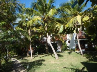 Sint Maarten Studio Apartment Swimming Pool Rental (17)